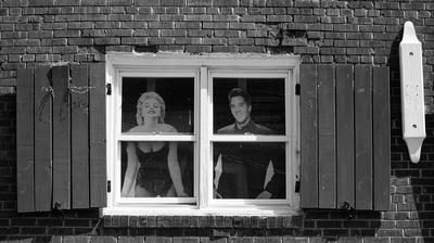 Elvis in Window